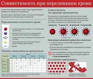 Исследование совместимости крови при переливании