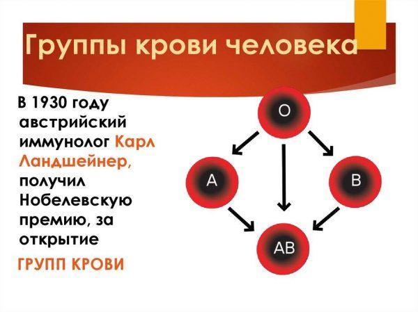 Какие существуют группы крови человека