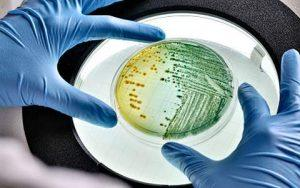 Как сдавать анализ на дисбактериоз кишечника
