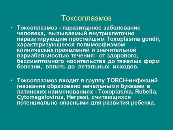 Общая информация о токсоплазмозе