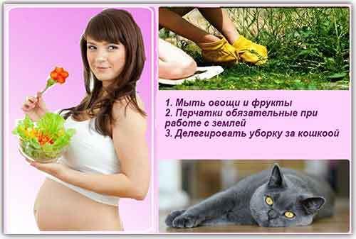 Профилактика токсоплазмоза при беременности