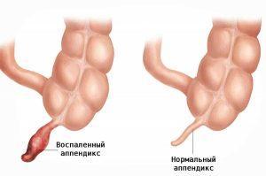 Форма органа