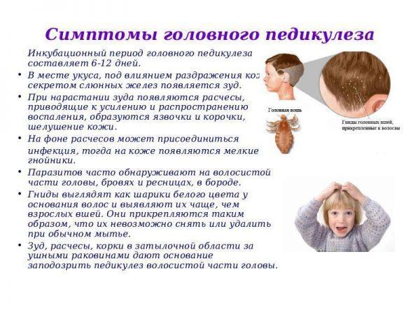 Симптомы при педикулезе