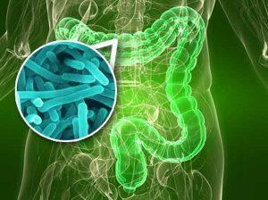 Отравление может быть вызвано патогенными микроорганизмами