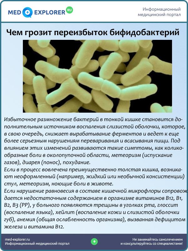 Чем грозит переизбыток бифидобактерий