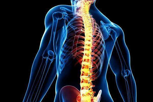 Есть несколько стадий протекания спинального шока