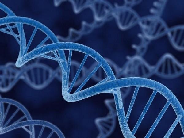 Наследственность часто обуславливает развитие колоректального рака
