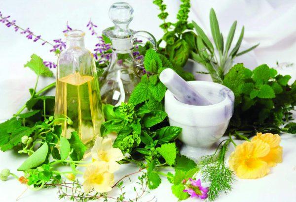 Народные средства мягко и постепенно нормализуют работу органов пищеварения