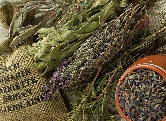 Травяная терапия – эффективный метод избавления от боли и тяжести в левом подреберье