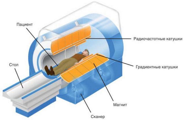 Действие аппарата МРТ основано на воздействии магнитного поля на атомы водорода