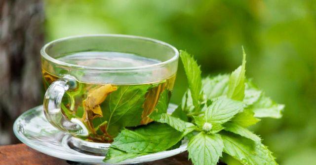 Чай с мятой подходит для лечения тошноты, рвоты и прочих симптомов гастрита