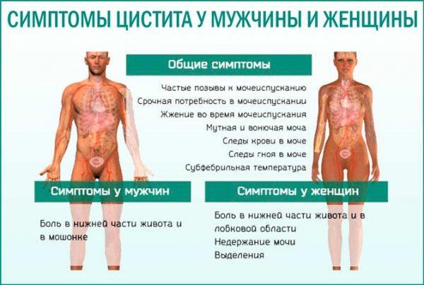 Симптомы цистита у мужчин и женщин