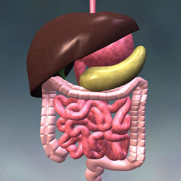 Основной причиной спазмов желудка являются патологии со стороны ЖКТ
