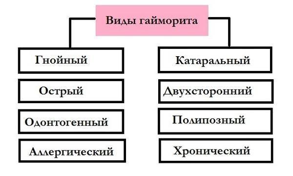 Блок-схема видов гайморита
