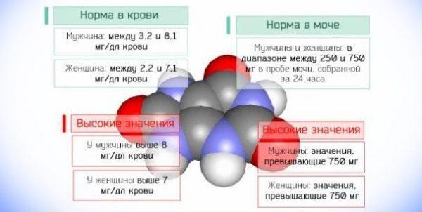 Нормальные и повышенные значения концентрации мочевой кислоты в моче и крови