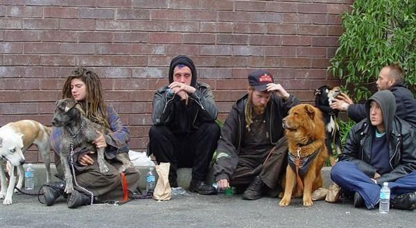 Бездомные часто болеют казеозной пневмонией
