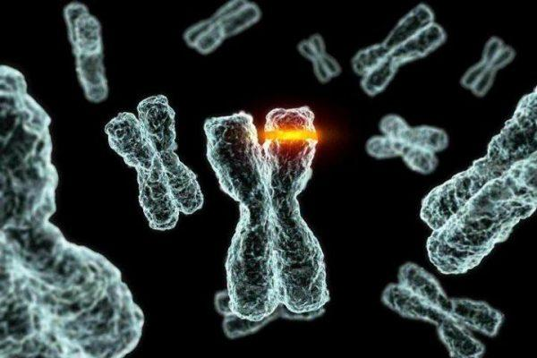 Что такое искусственный мутагенез