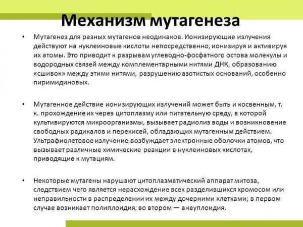 Механизм мутагенеза