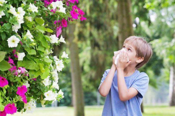 Показания для аллергопробы