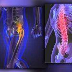 Cекреты здоровья суставов и позвоночника