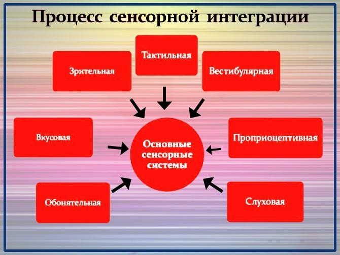 Процесс сенсорной интеграции