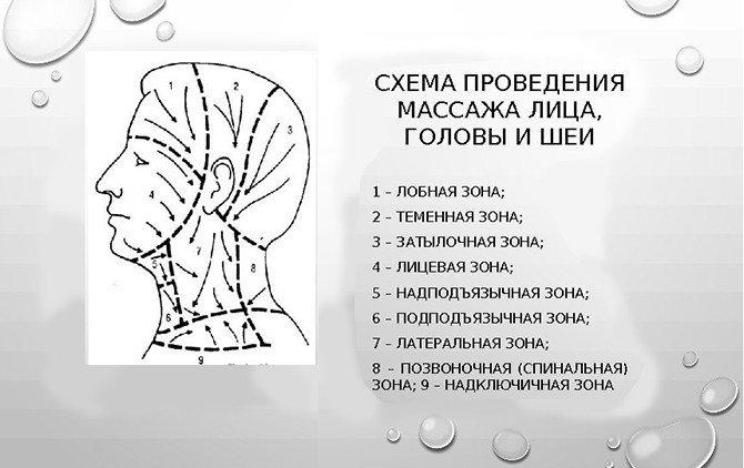 Схема проведения массажа шеи, лица и головы