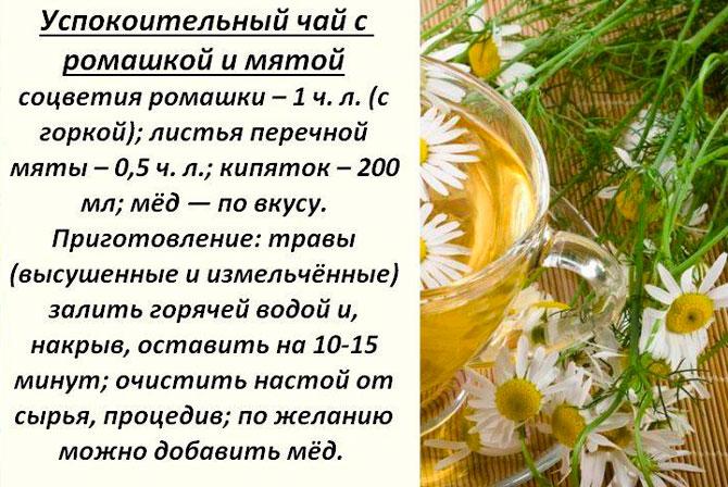 Успокоительный чай рецепт