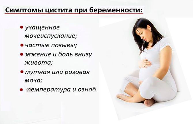Симптомы цистита при беременности