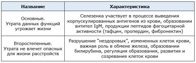 Важные функции селезенки таблица